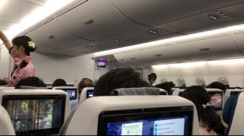 ANA A380 フライングホヌの機内はもうハワイ気分