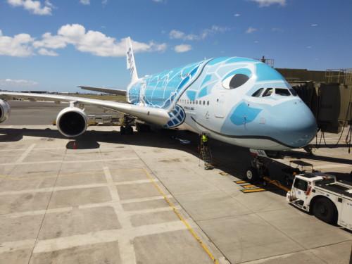 ANA A380 フライングホヌ