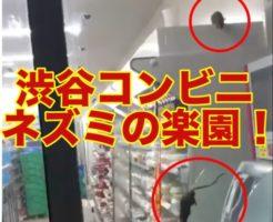 渋谷,コンビニ,ネズミ,ファミマ,famima
