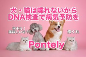 犬・猫のDNA検査で将来の病気を早期発見できる『Pontely』