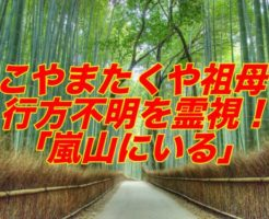 ヤバTこやまたくや祖母の安否を鑑定士が霊視「嵐山の竹薮にいる」