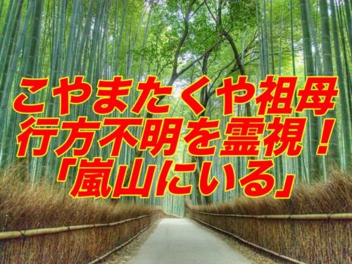 ヤバイTシャツ屋さん, ヤバT, こやまたくや, 祖母, 行方不明, 霊視, 嵐山, 竹藪