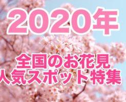 2020年, 関東, 関西, インスタ映え, お花見, 人気スポット