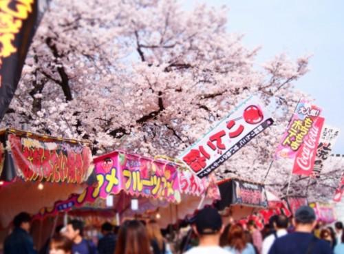 目黒川桜祭りインスタ映えスポット