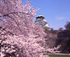 2020, 大阪城公園, 桜, 開花予想, 穴場, 混雑, アクセス
